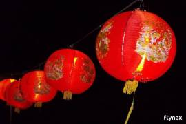 ASIAN LANTERN TABLE/DESK HOME DECOR LAMP